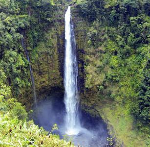 Akaka Falls 2012
