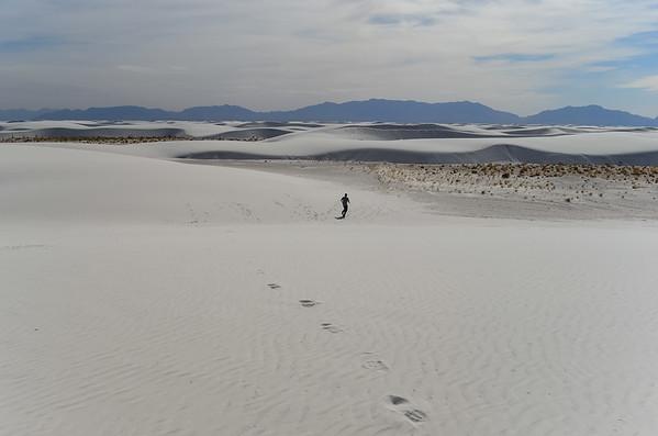 White Sands NM 2014