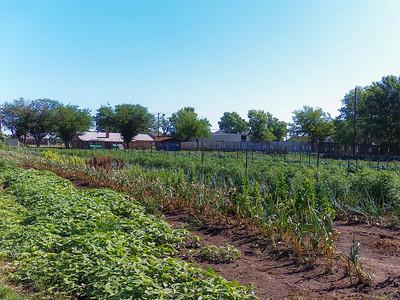 Keller - Homestead Farm - 2013