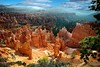 UT-Bryce Canyon National Park-Sunset Point    Other Images of Sunset Point       Improved Framed Version of this Photo is in this Gallery