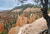 UT-Bryce Canyon National Park-Fairyland Canyon-2006-09-20-0002