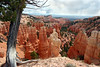 UT-Bryce Canyon National Park-Fairyland Canyon-2006-09-20-0024
