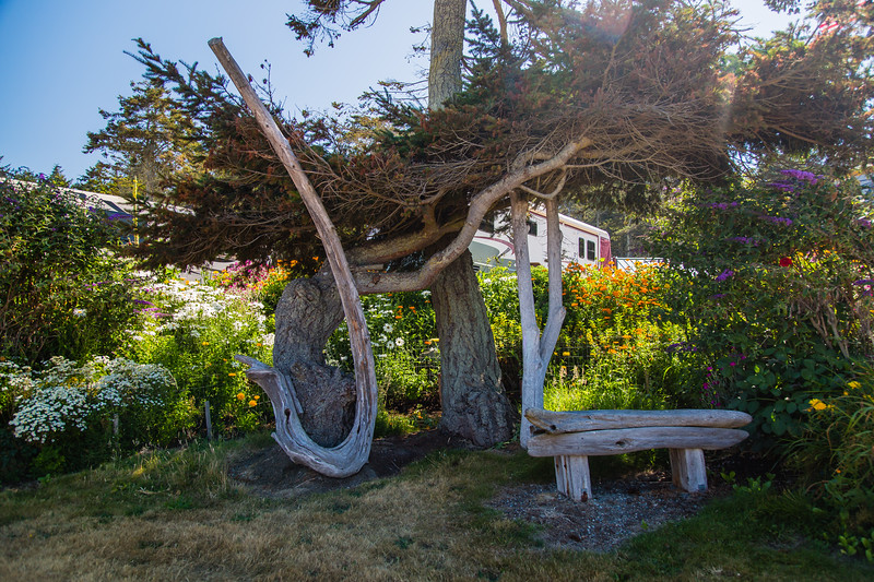 Driftwood Joy Signs