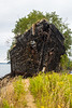 Anacortes, WA - Overgrown Ship Hulk