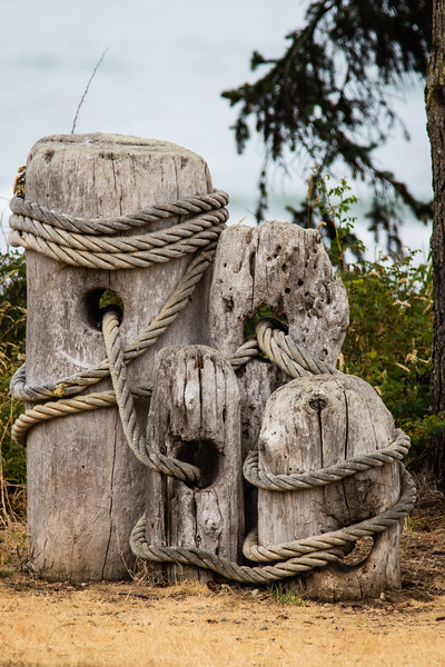 Driftwood and Ropes
