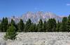 WY-Jackson-Grand Teton NP-2005-09-01-0009