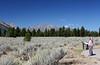 WY-Jackson-Grand Teton NP-2005-09-01-0008
