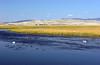 WY-Jackson-Flat Creek Area-2005-09-01-0012