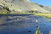 WY-Jackson-Flat Creek Area-2005-09-01-0007