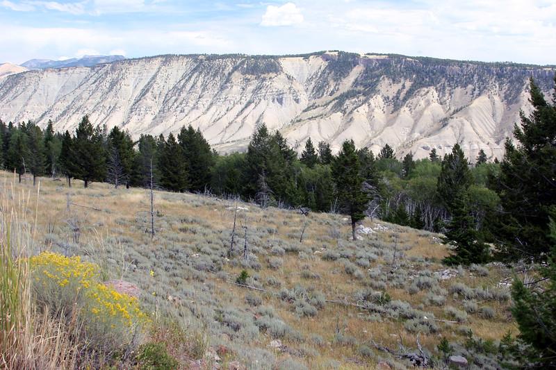 WY-Yellowstone NP-Burn Mosaic Area-2005-09-03-0001