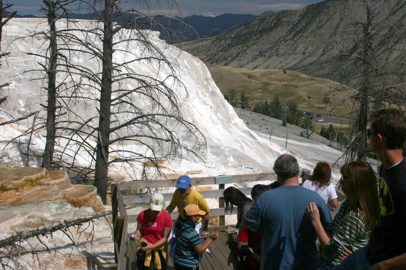 WY-Yellowstone NP-Canary Springs Area-2005-09-03-0009