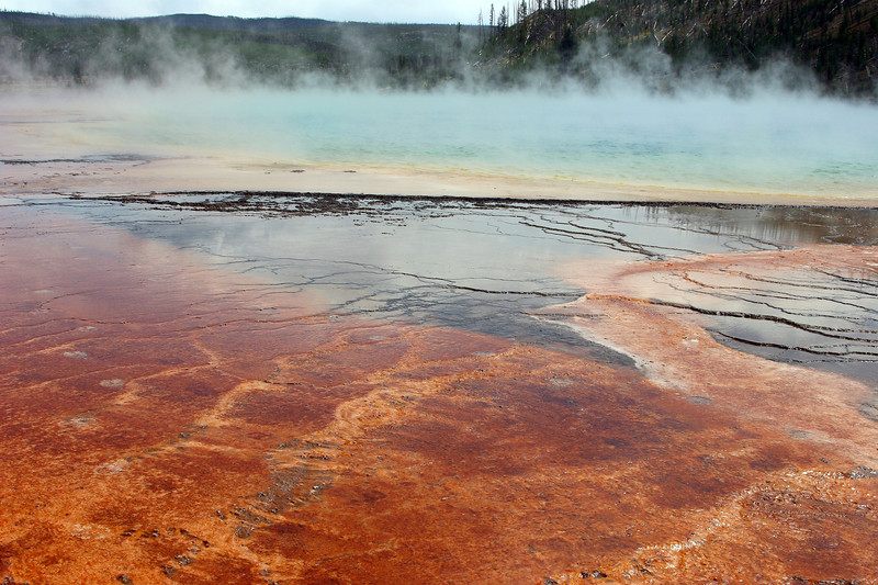 WY-Yellowstone NP-Midway Geyser Basin Area-2005-09-02-0014
