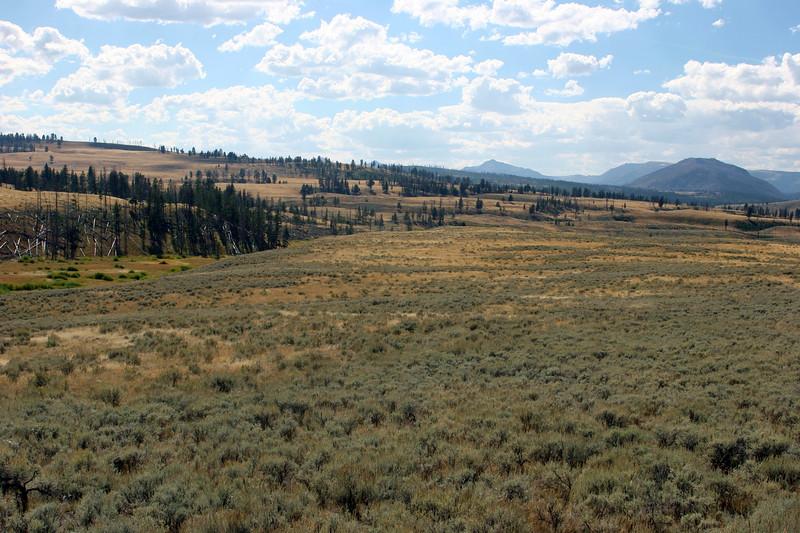 WY-Yellowstone NP-Gallatin Range Area-2005-09-03-0006