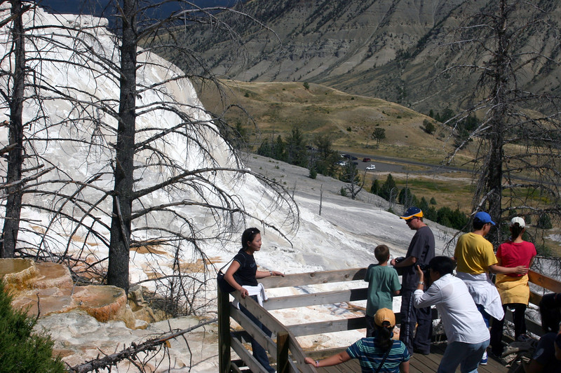 WY-Yellowstone NP-Canary Springs Area-2005-09-03-0010