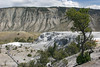 WY-Yellowstone NP-Canary Springs Area-2005-09-03-0020