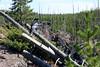 WY-Yellowstone NP-Firehole Falls Area-2005-09-02-0002