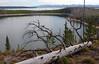 WY-Yellowstone NP-2005-09-02-0003