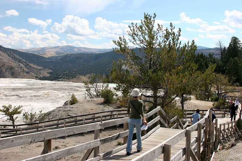 WY-Yellowstone NP-Canary Springs Area-2005-09-03-0001
