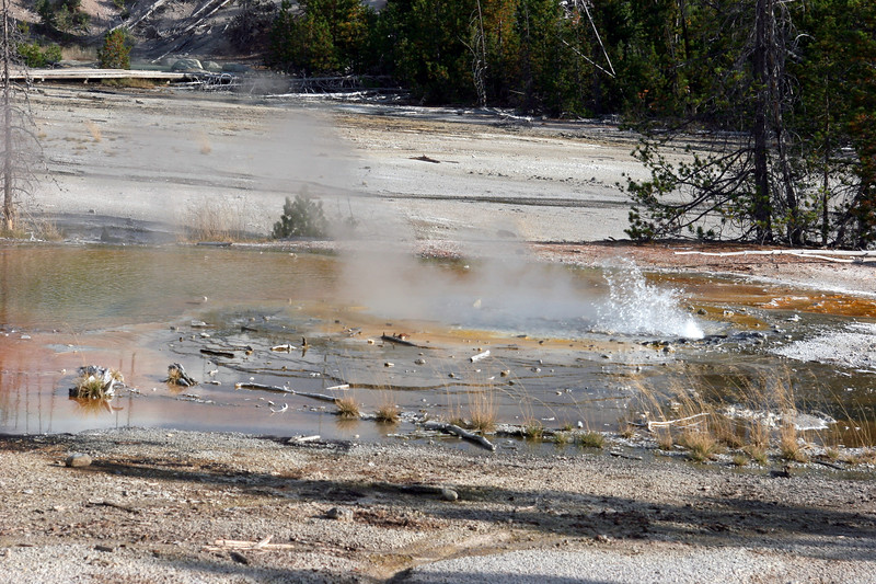 WY-Yellowstone NP-Minute Geyser-2005-09-02-0001
