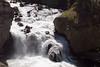 WY-Yellowstone NP-Firehole Falls Area-2005-09-02-0001