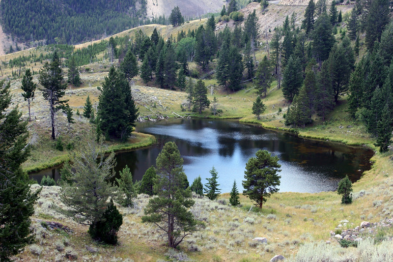 WY-Yellowstone NP-Burn Mosaic Area-2005-09-03-0004