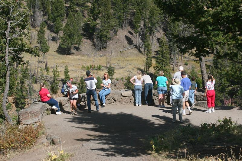 WY-Yellowstone NP-Undine Falls Area-2005-09-03-0001