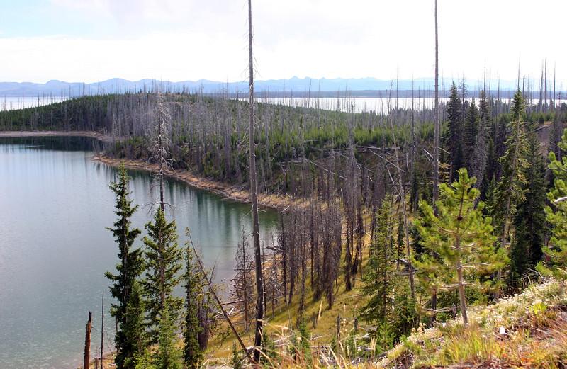WY-Yellowstone NP-2005-09-02-0002