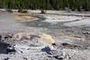 WY-Yellowstone NP-Veteran Geyser-2005-09-02-0003
