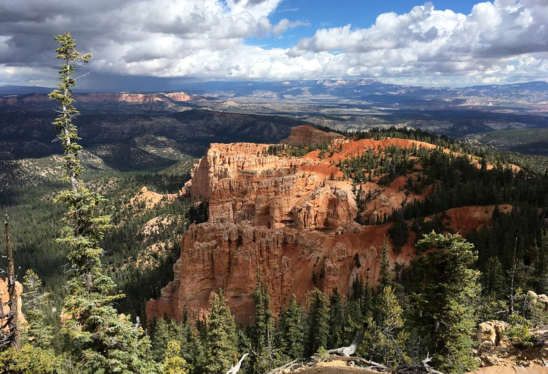 Top of Bryce Canyon around 2800m