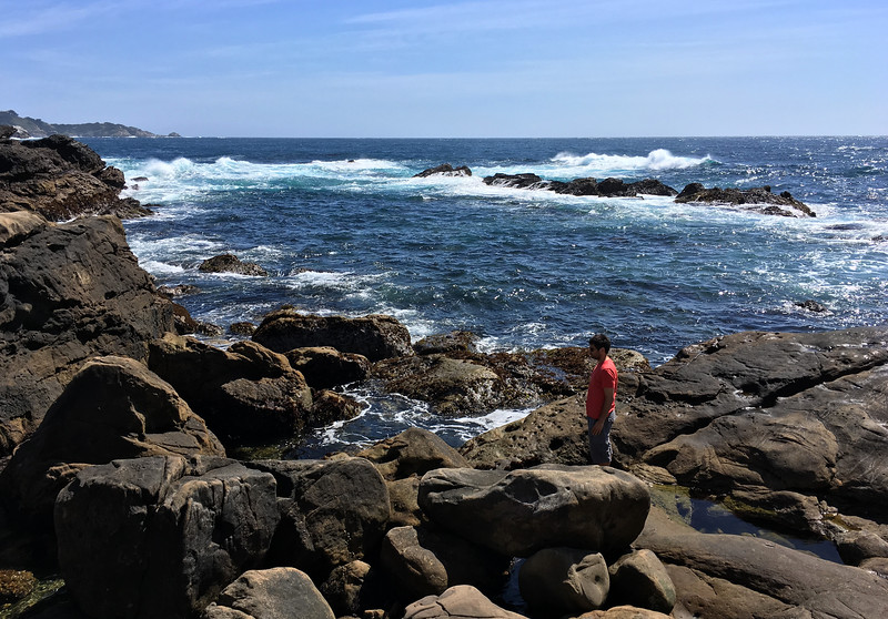 Stopping at Point Lobos State Natural Reserve for a run