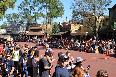 Crowd waiting for Disney Parade