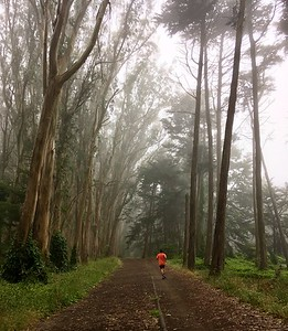 Running around foggy Presidio