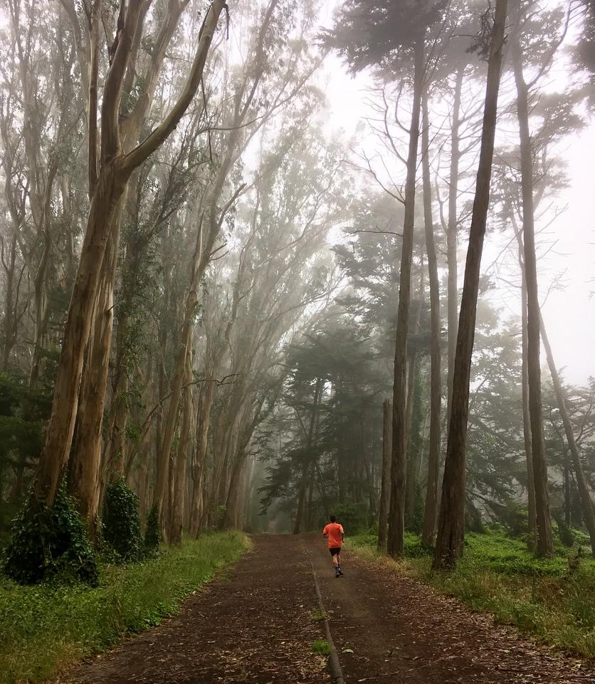 Running around foggy Presidio