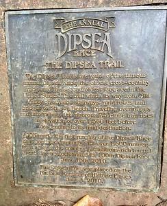 We went to run around Dipsea trail