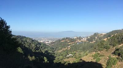 Berkeley Fire Trail