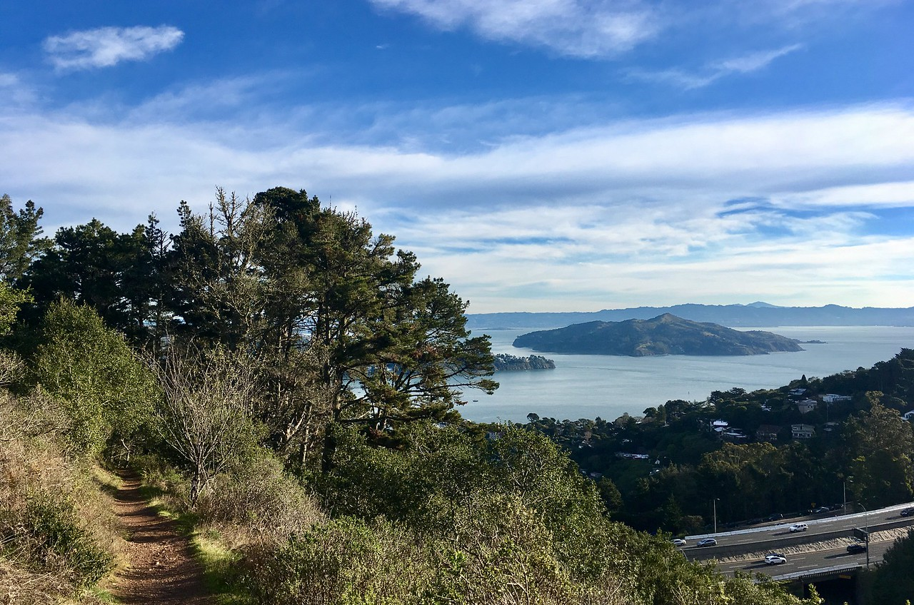 Angel Island from Morning Sun trail