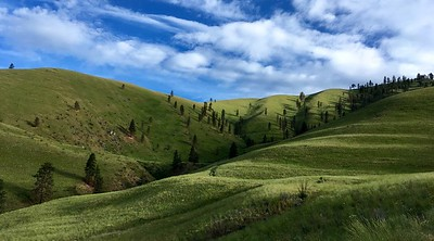 Gentle slopes and rolling hills: 12km of pure pleasure