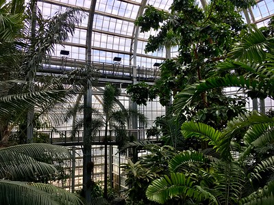 In the United States Botanic Garden