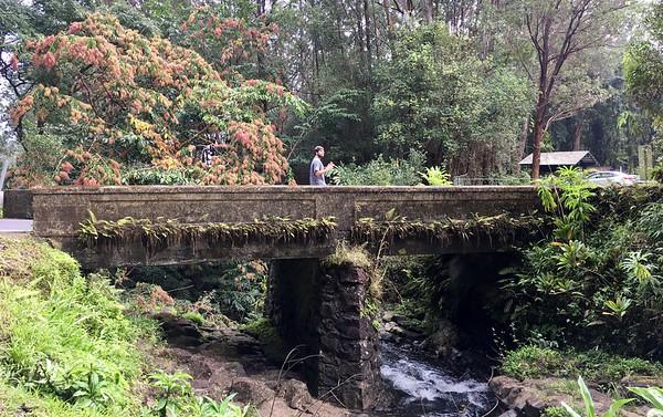 Graham on the bridge