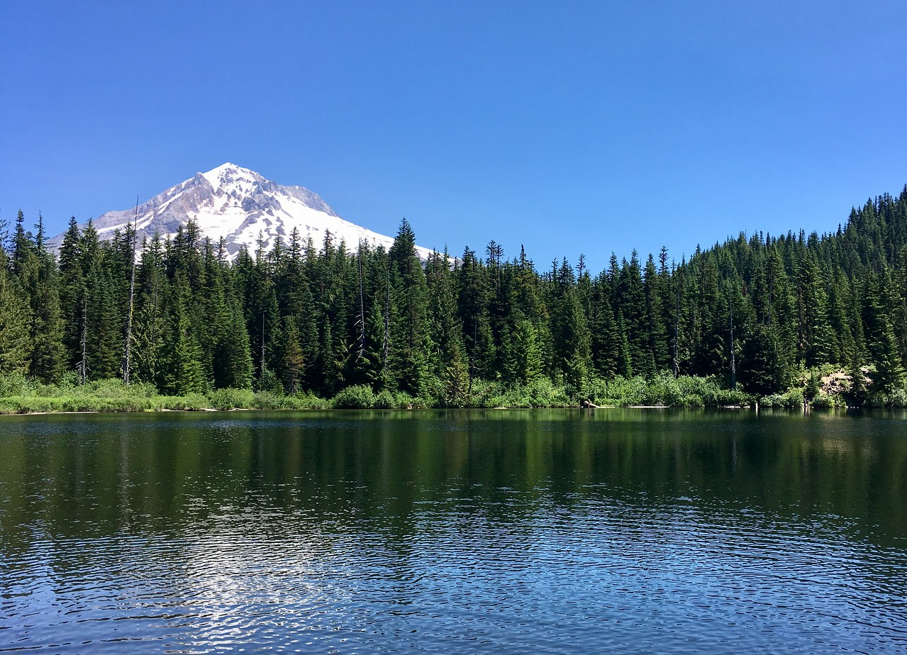 Views of Mt Hood from Burnt Lake