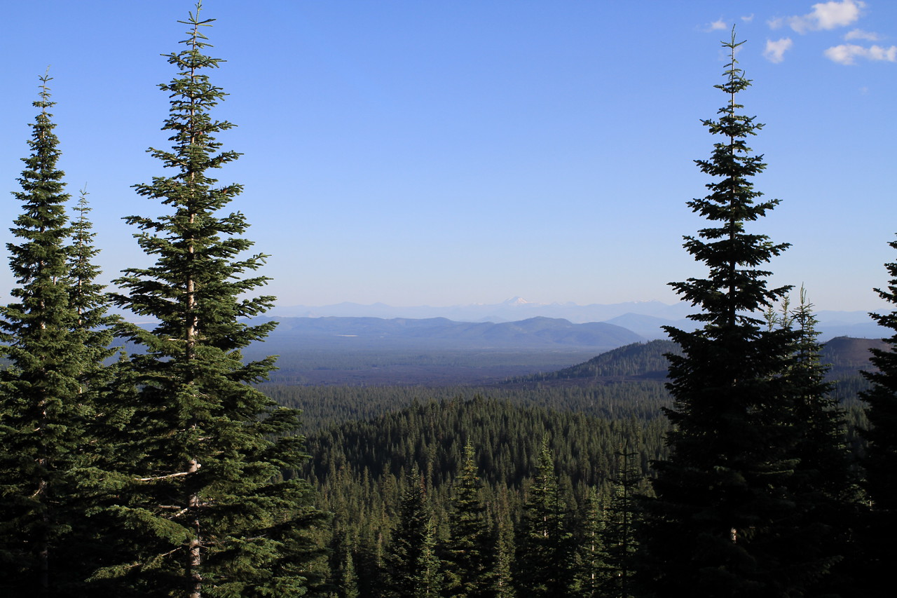Deep in Modoc National Forest