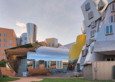 MIT Stata Centre, Roof Garden