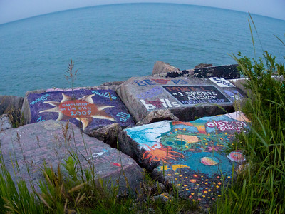 Rock Art along the Lake Michigan shoreline at Northwestern (interestingly there's even a book on it: http://nurockart.com/)