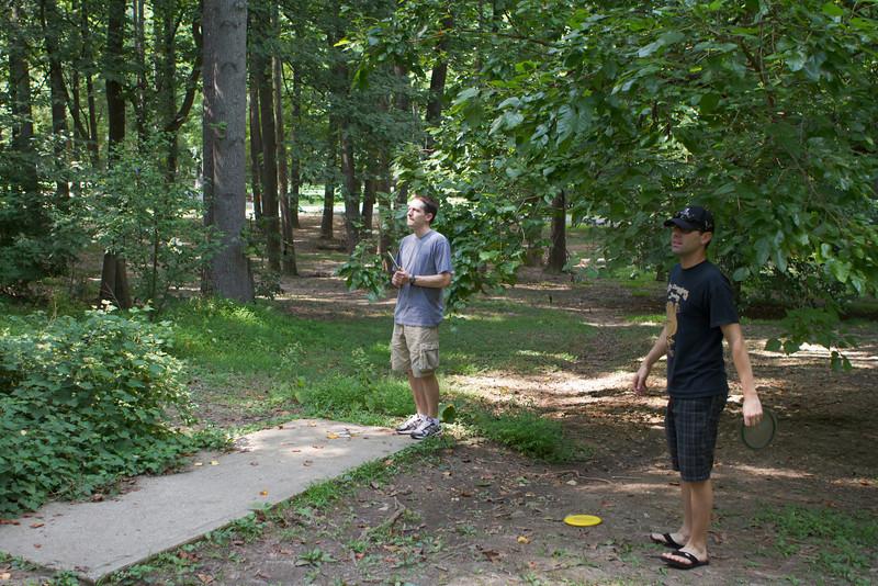 Disc Golfing at Bluemont Park
