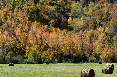 Hay Bales in the Ozarks