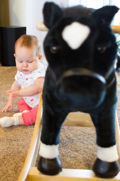 Not so sure about the rocking horse