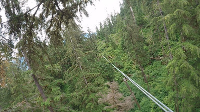 Riding the Zipline