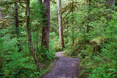 Lunch Creek Loop Trail