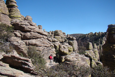2012 02 fev Chiricahua Mountains (again)
