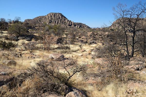Mais ce paysage de foret brulée ( en mai 2011) nous déprime, c'est presque angoissant tout ce noir, et FREDERIC décide de faire demi-tour pour retourner crapahuter dans Echo Canyon